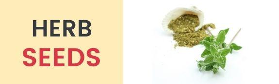Culinary Herbs Seeds