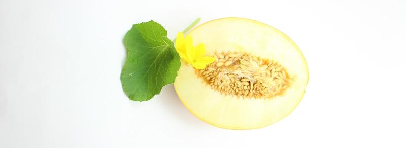 Ananas Yoqne'am Heirloom Melon Origin