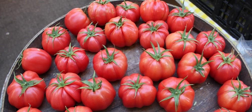 העגבניה האגדתית - מרמנד